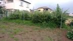 飯能市 伐採伐根(不用品処分)工事